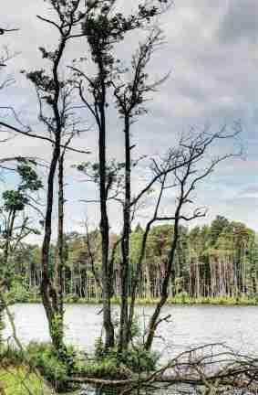 Rowy - am Groß Dolgen See (Jezioro Dołgie Duże)