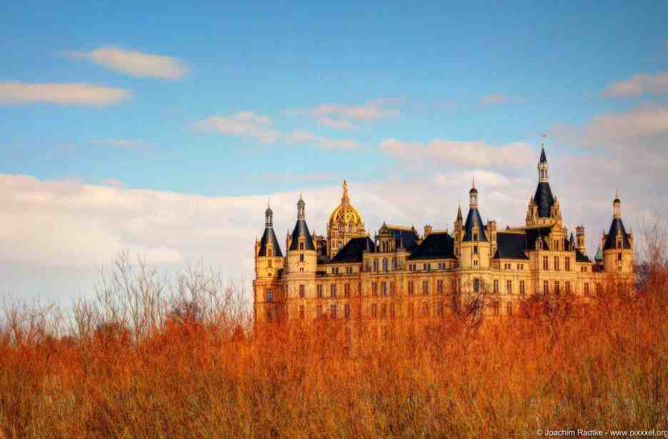 Das Schweriner Schloss hinter Schilf