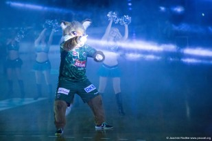 DKB Bundesliga Handball 11.02.2015 Füchse Berlin – GWD Minden (4)
